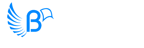 Birdseye Construction