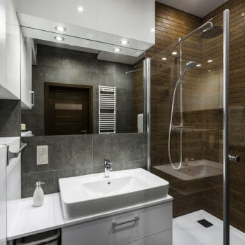 Small Bathroom Remodel Ideas Birdseye Construction