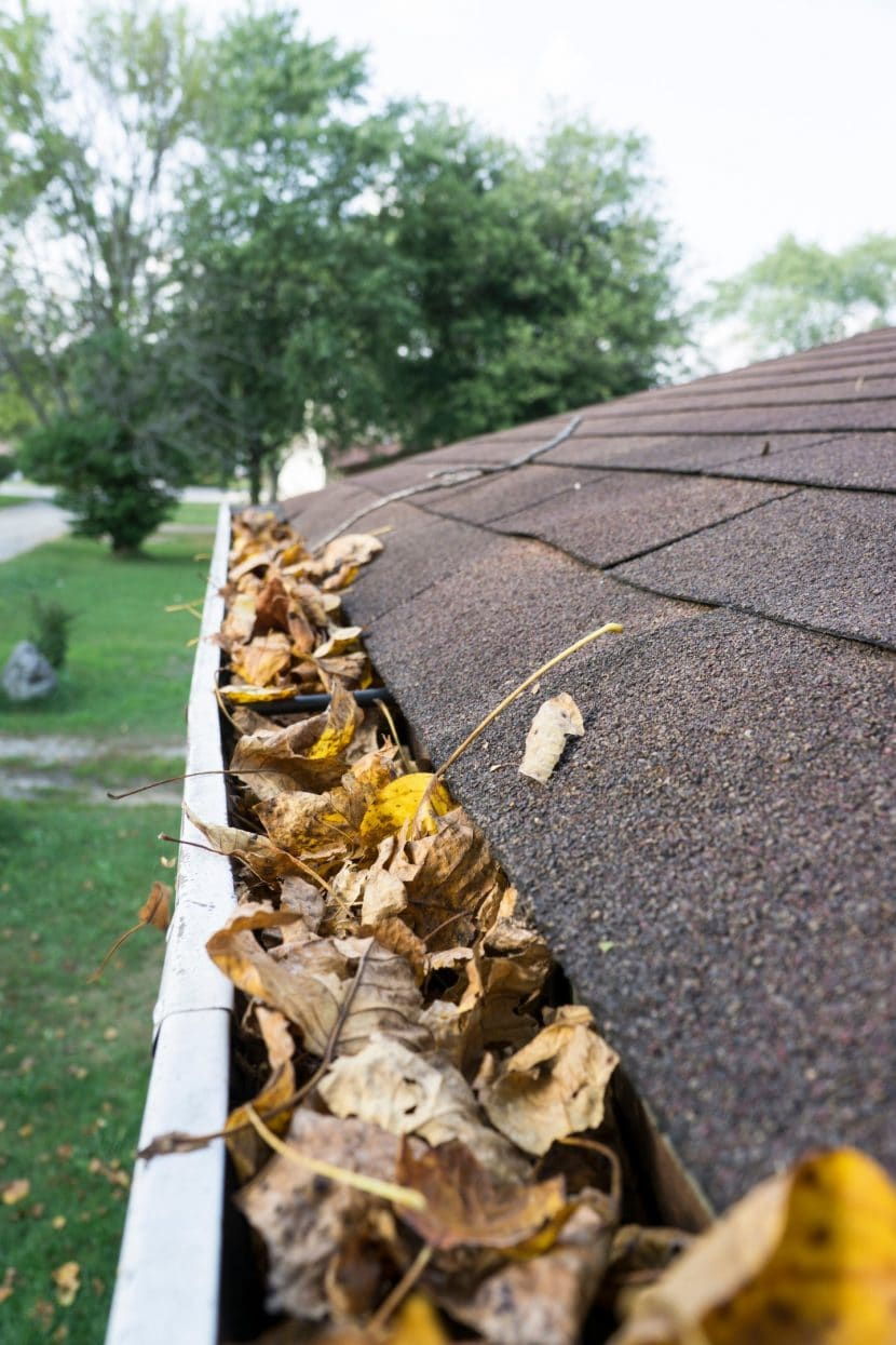 gutter winter cleaning